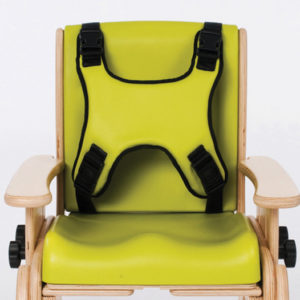 juni chair four point harness