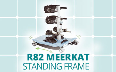R82 Meerkat Standing Frame   Standing made fun and easy!